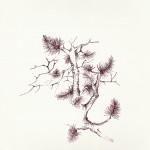 """""""PINO MUGO"""" - Inchiostro su carta, 21x28 cm, anno 2012"""